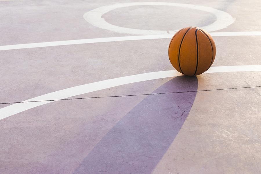 progetto basket istituti polesani